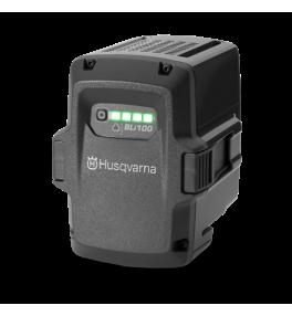 Batterie profesionnelle BLi100
