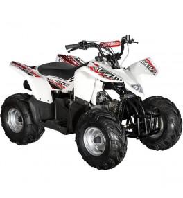 Quad HY100 SX