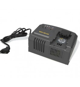 SFC48AE Chargeur rapide 230 V